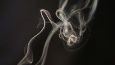 Главный источник неприятного запаха навостоке столицы - полигон «Кучино»