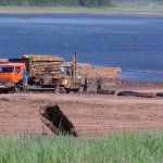 вырубка лесов на Байкале