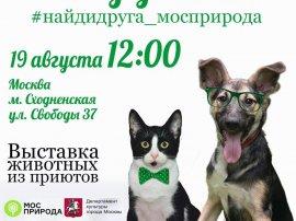 Выставки в Москве Актуальная информация о московских