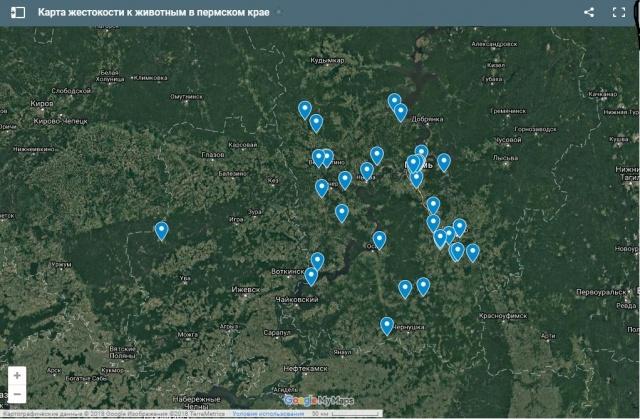 В Перми начали создавать «карту жестокости над животными»
