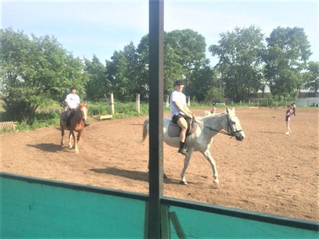 Вологда дети-сироты конный спорт