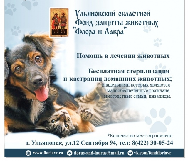 помощь владельцам животных Ульяновск