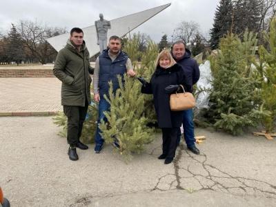 Экоактивисты собрали в Нальчике новогодние елки для утилизации Окружающая среда