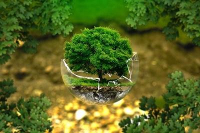 Профессиональное экологическое сопровождение компаний